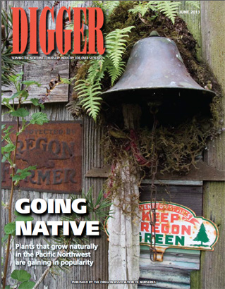 Digger Cover, June 2013