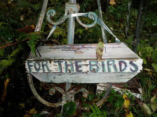 gardening - its' for the birds